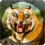 Forest Animal Hunting 2018 – 3D 1.2.4 (MOD, Unlimited Money)