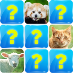 Memory Game: Animals 6.5 (MOD, Unlimited Money)