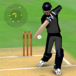 Smashing Cricket – a cricket game like none other 3.0.2 (MOD, Unlimited Money)