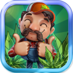 CannaFarm – Weed Farming Collection Game 1.8.706 (MOD, Unlimited Money)