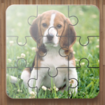 Dog Puzzle Games Free  (MOD, Unlimited Money) 2.34