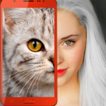 Kittens: what cat are you? prank 2.7 (MOD, Unlimited Money)